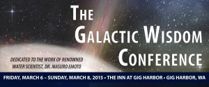 galactic wisdom conference banner